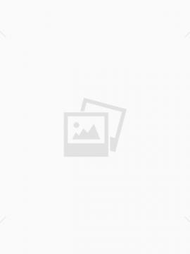 מגה-אזופגוס בכלבים- וטרינר נייד עמק חפר קיסריה והסביבה